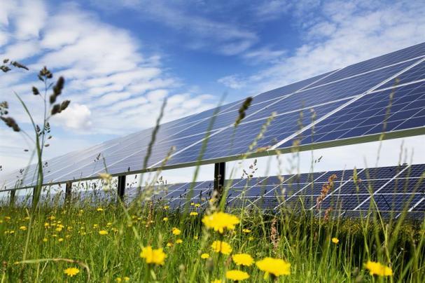 Parken har en kapacitet på 5,8 MW och består av 21 000 solpaneler på cirka åtta hektar.