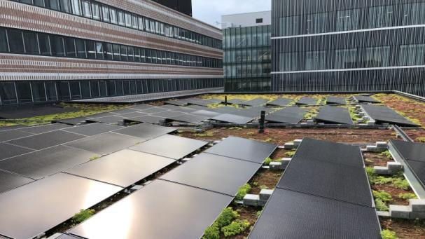 Solceller på Widerströmska huset iCampus Solna.