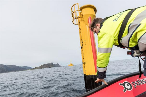 Waves4Powers vågkraftsystem kopplas upp