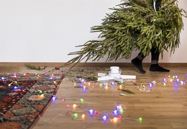 Skellefteå Kraft samlar in julgranar och använder dem för att producera värme.