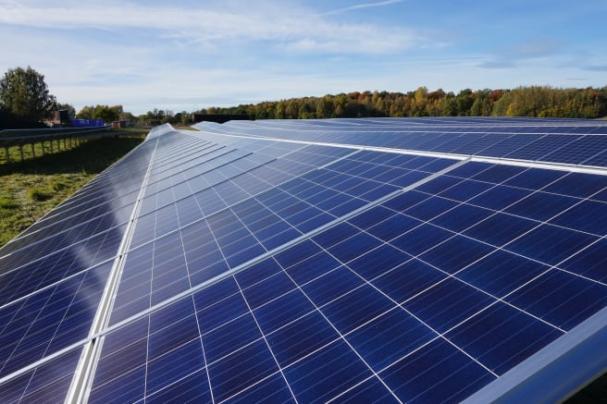 Solceller i Törneby Solpark, där elen kommer att produceras.