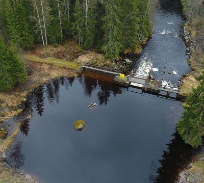 Dammen i Rinn.