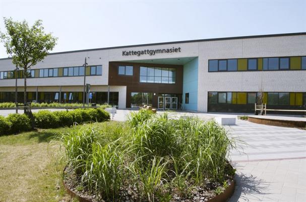 Kattegattgymnasiet i Halmstad flyttade nyligen in i en toppmodern, nybyggd skola utrustad med Sveriges första hjärngym.