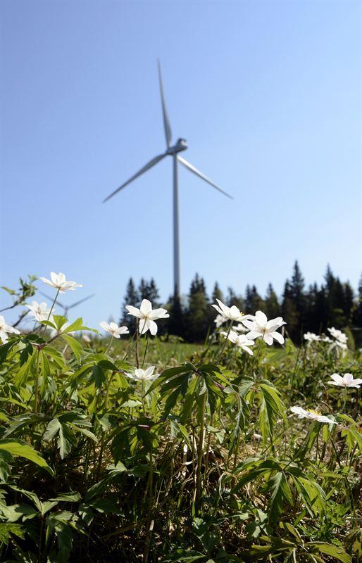 Vindkraftverk Bixia