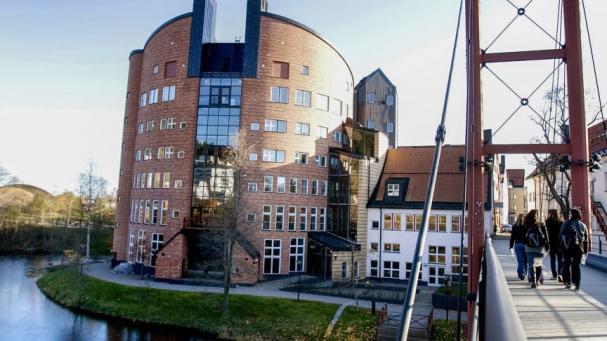 Nu är FVB delaktiga i fler kurser vid Mittuniversitetet.
